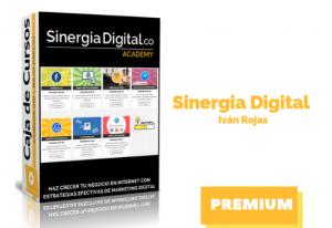 Curso Sinergia Digital Academy