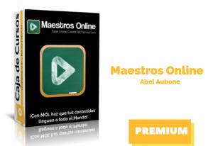 Curso Maestros Online