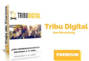 Lee más sobre el artículo Curso Tribu Digital