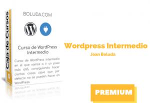 Curso WordPress Intermedio Joan Boluda