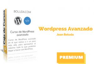 Curso WordPress Avanzado – Joan Boluda
