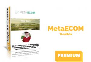 Curso Meta Ecom de Theo Meta