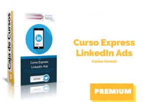 Curso Express LinkedIn Ads