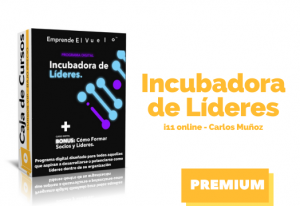 Lee más sobre el artículo Curso Incubadora de Líderes – Carlos Muñoz